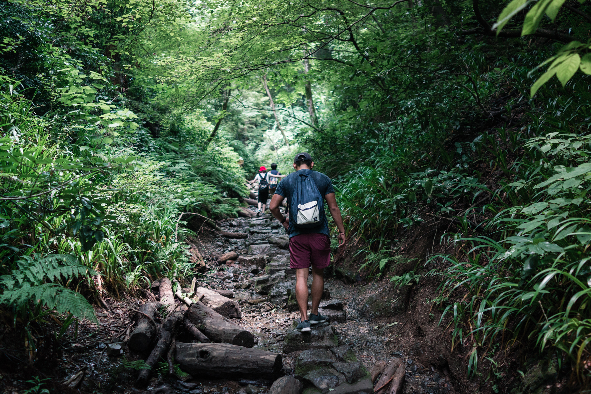 Creek of Mt. Takao