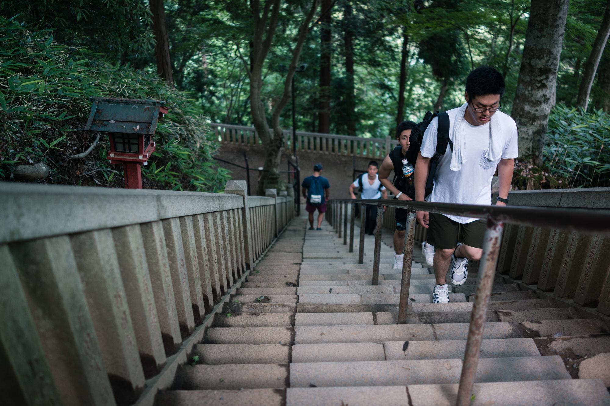 Mt. Takao Stairs