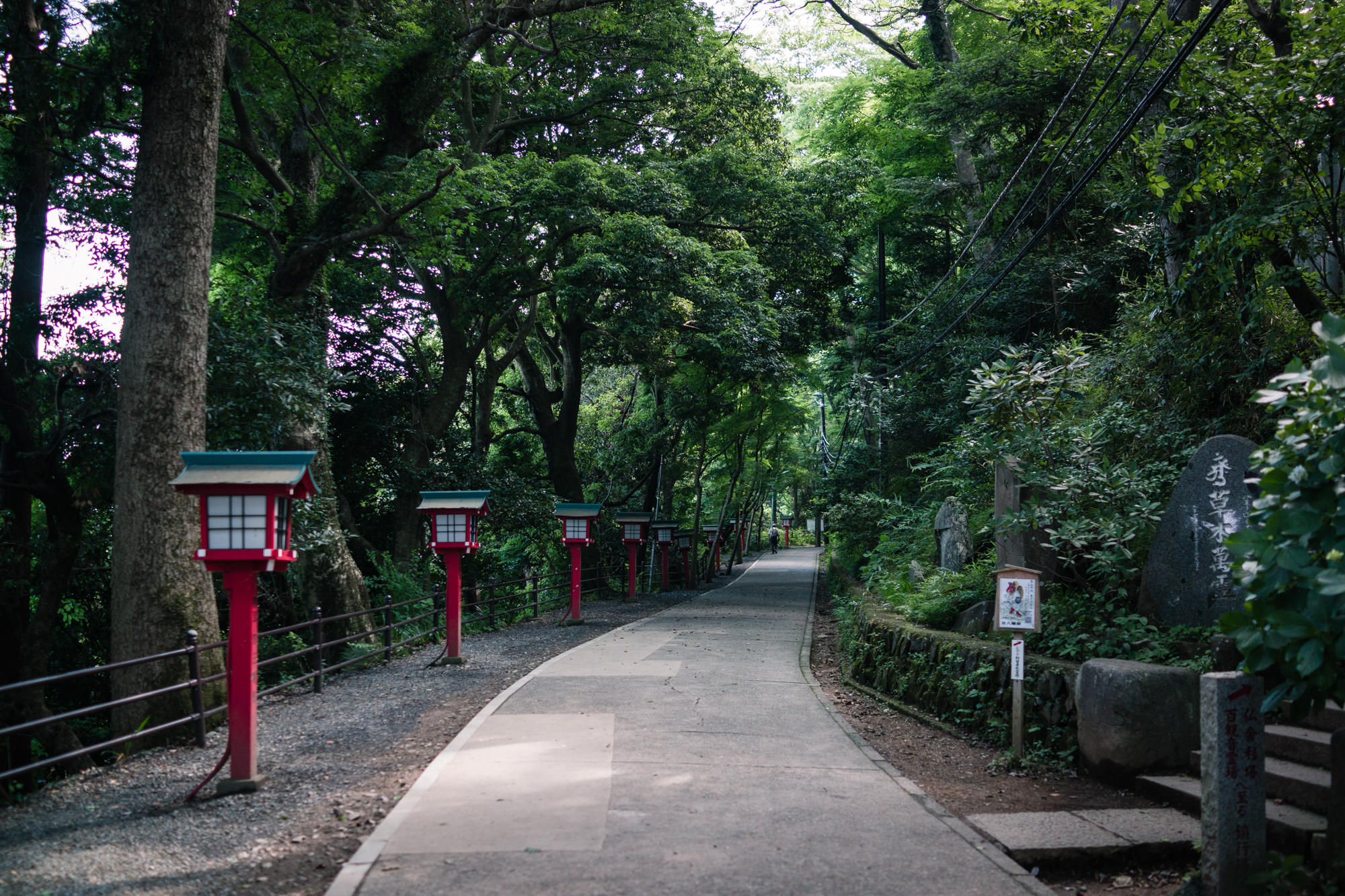 Red Lanterns of Mt. Takao