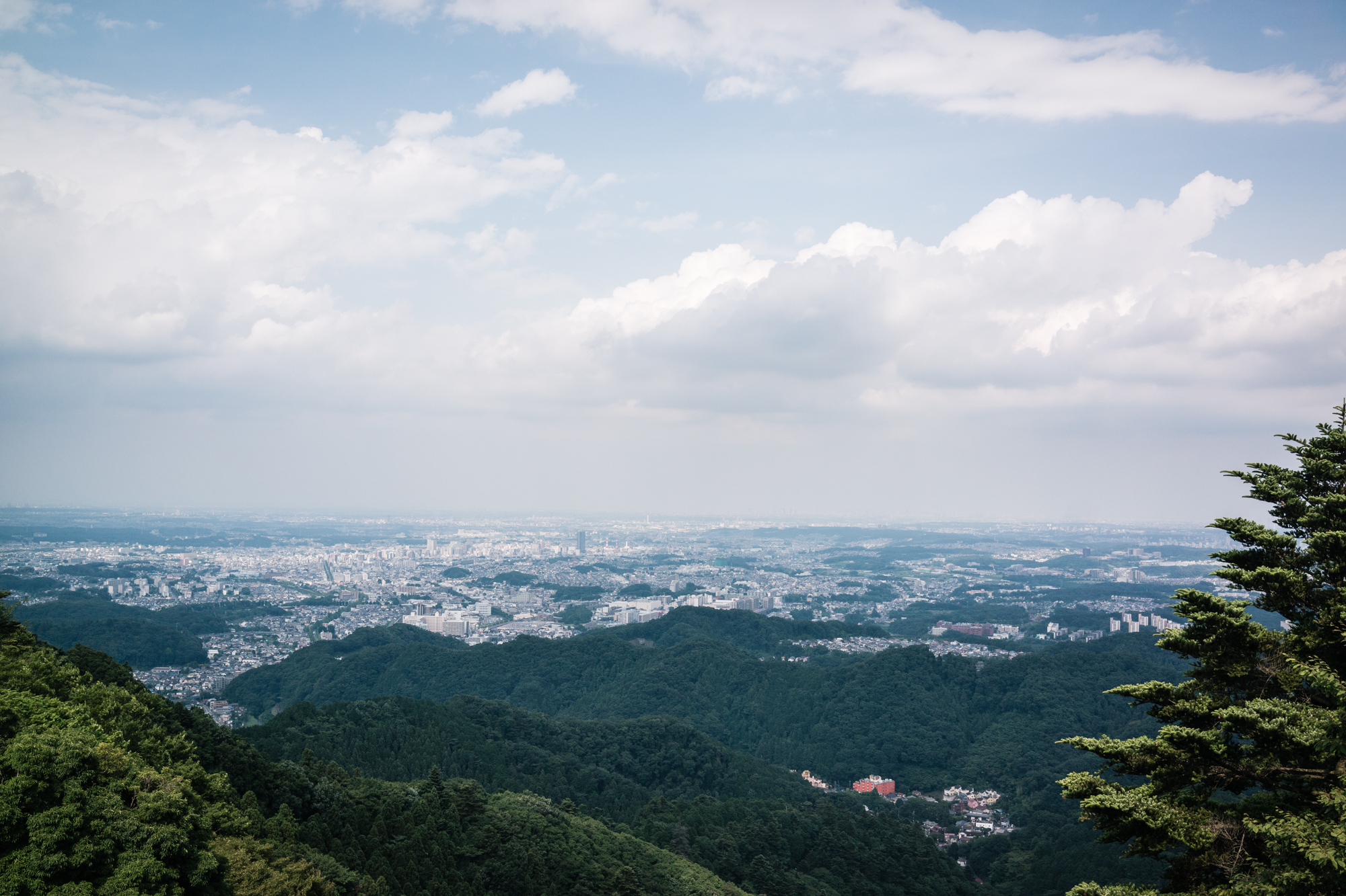 Mt. Takao Beer Mount View