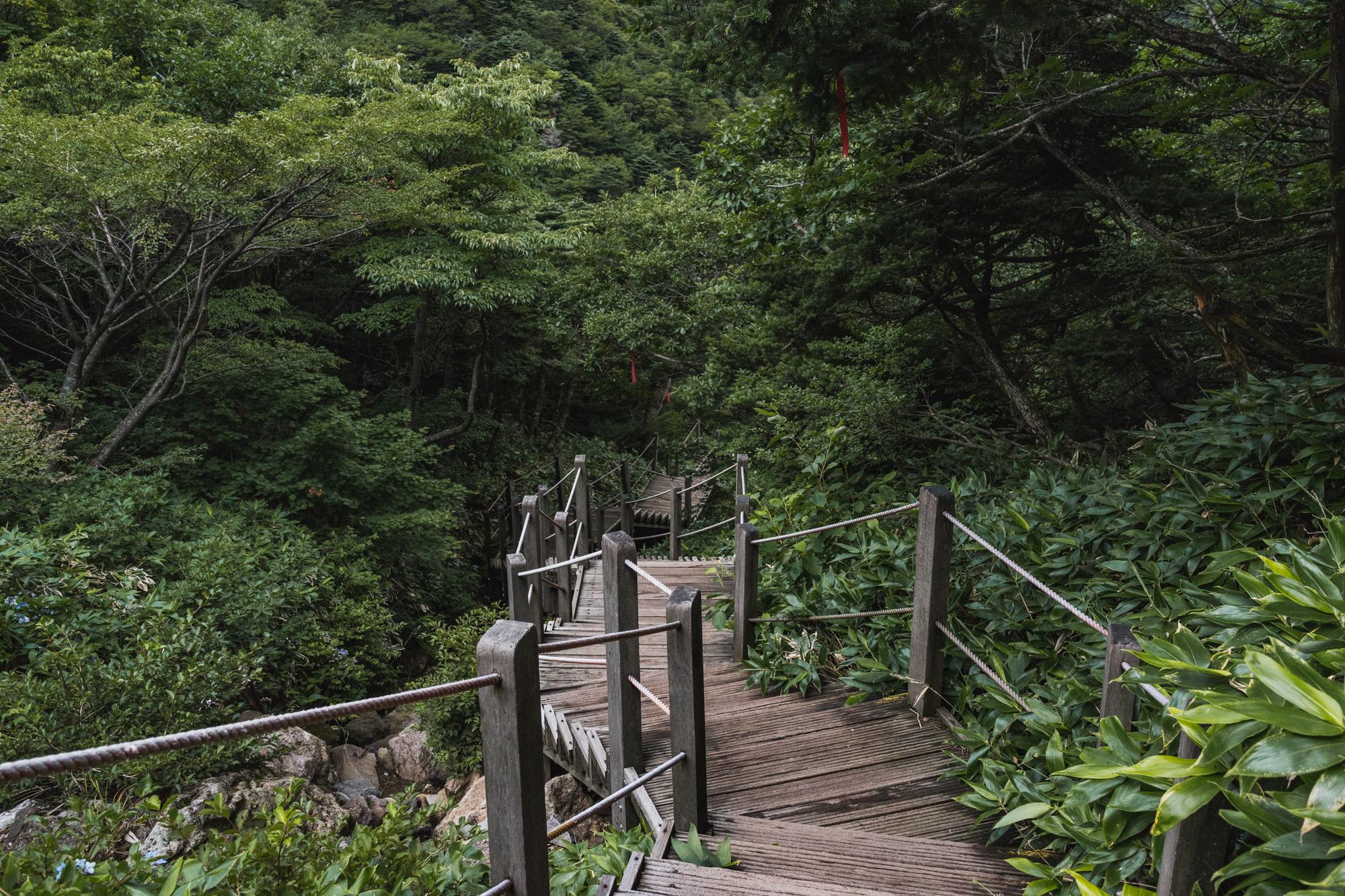 Mt. Hallasan in Jeju Island