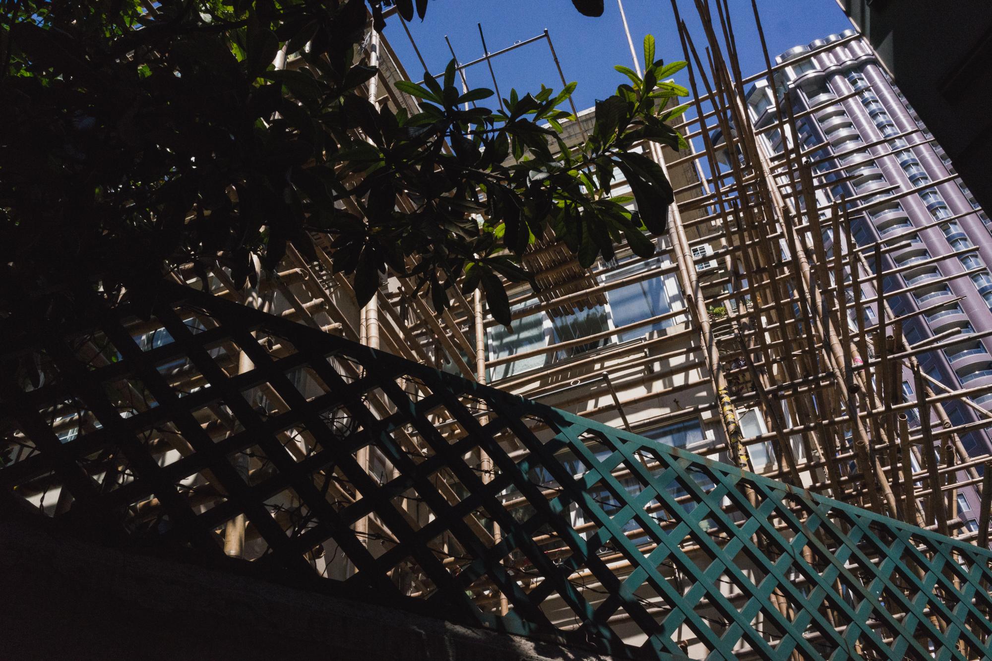 Bamboo Construction in Shanghai China