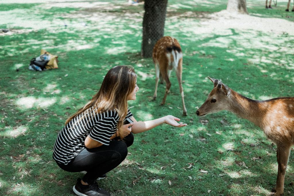 Deep in Nara, Japan